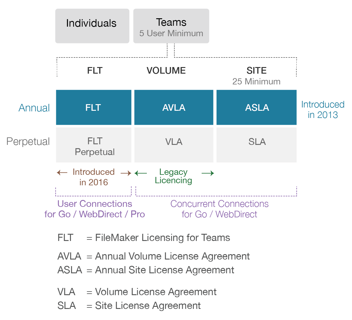 FileMaker licensing for teams with concurrent connections
