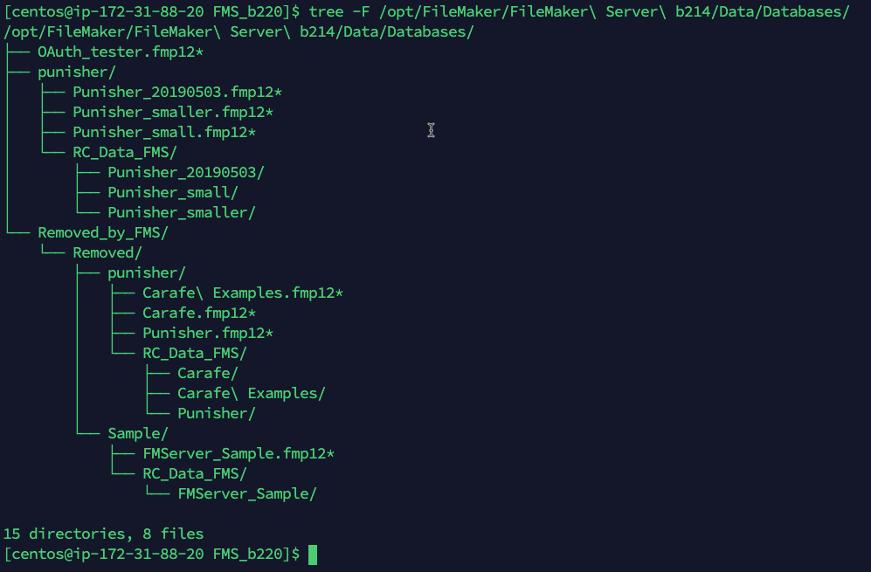 Screenshot of files in the punisher subfolder