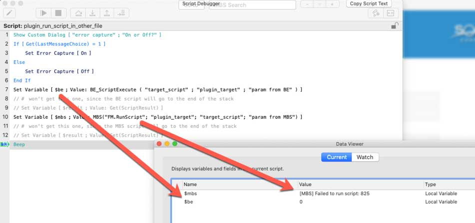 Screenshot of the Script Debugger and Data Viewer