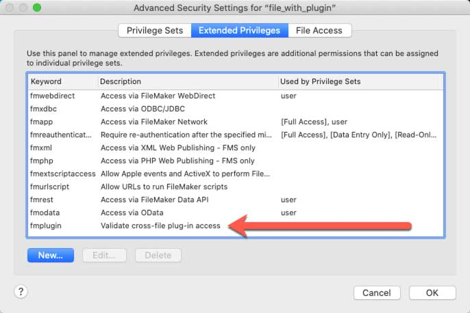 "Screenshot of the Advanced Security Setting for ""file_with_plugin"" highlighting a new fmplugin extended privilege"