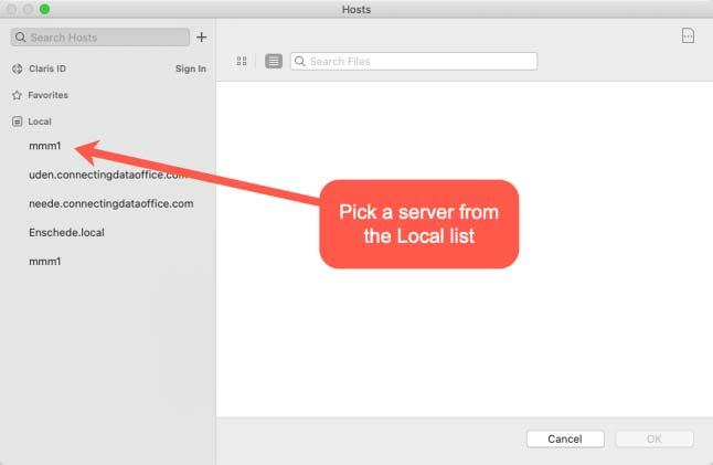 Screenshot of list of local servers