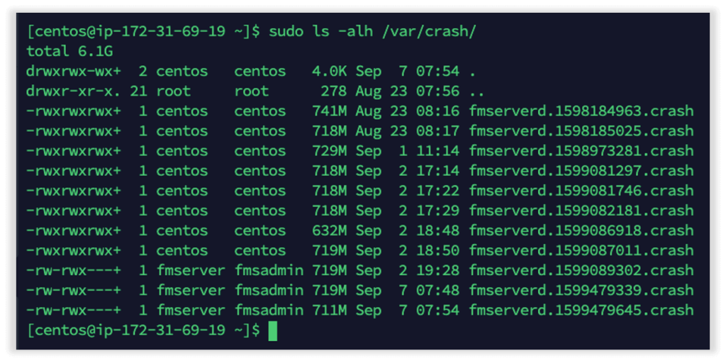 Photo of the crash log showing files listed with a FileMaker Server process as part of their name